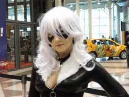 NYCC'11 Black Cat A II by zer0guard