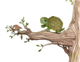 Turtles like 2 climb trees too by morganobrienart