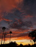 1st Day of September 2013 California Sunset by ShipperTrish