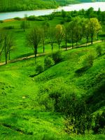 Green Slopes by Undefined-Mari