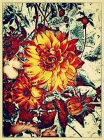 Flowers v.4 by Scorpion31