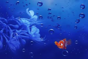 Pictures Of Nemo by sharewallpaper
