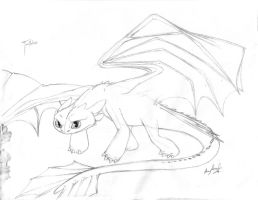 first Toothless by AmmyWolf95