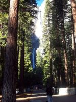 yosemite in all its glory by Angels-Pixie-D