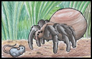 Mouse And Spider. by Virus-20