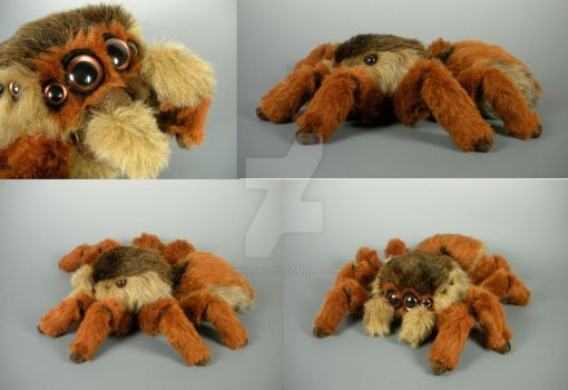 2015 Jumping Spider by WhittyKitty