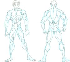 Male Anatomy Reference 1 by naiser