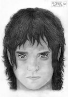 Frodo Baggins by Steve-Nice
