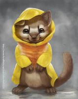 Marten in Raincoat by Silverfox5213