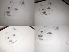Meme Doge Draw by euamodeus