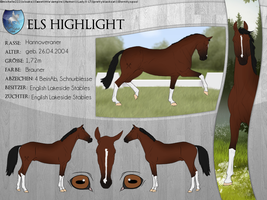 ELS Highlight by michelle222
