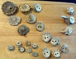 First few antler buttons done by flufdrax