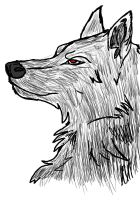 Wolf by Draconian12