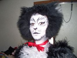 Mistoffelees Makeup - 2010 by BreachofReality