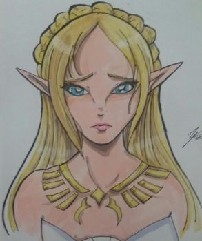 Princess Zelda by WolffangComics