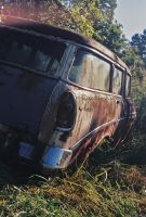 Rust in Weeds by cami-rox