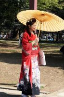 Japanese Beauty 2 by fayedilion