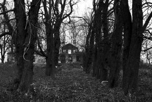 the forgotten manor 4 by Su58