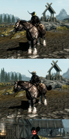 Skyrim mods by GingaAkam