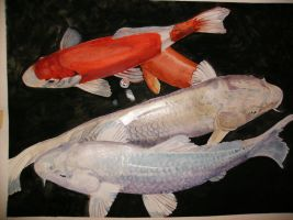 mating koi by 21stCenturyDamocles