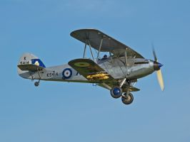 Hawker Hind Old Warden 2012 by davepphotographer