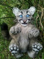 Florida panther cub poseable art doll by twyliteskyz