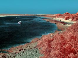 IR Oualidia (Morocco) by agelisgeo
