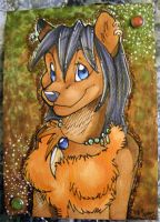 ACEO trade with Aura by Suane
