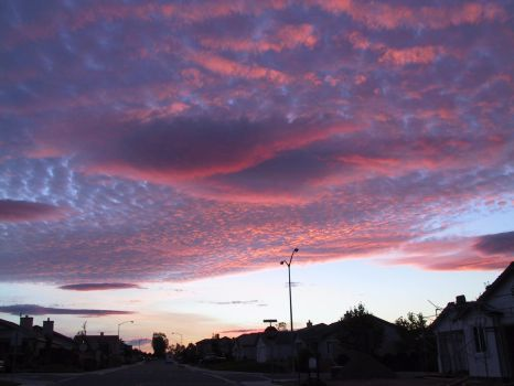 I love sunsets by Dragons-Teeth