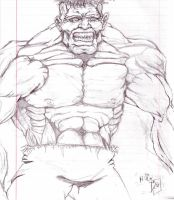 The Hulk by danlewis4475