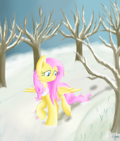 Winter Walk by Violyre