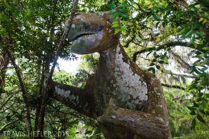 Sloth at Bongoland by Swaptrick