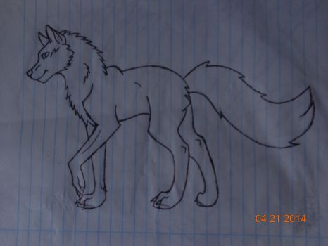 Drawing a wolfie by Coraline2468