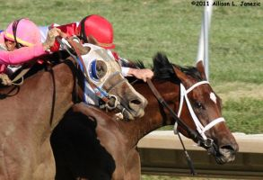 BLIND LUCK AND HAVRE DE GRACE by Prairie-Bayou