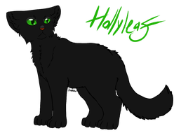 Hollyleaf by Shakshun