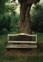 The Weathered Bench by midnightstouchSTOCK
