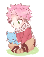 Natsu and Happy by ponchiz