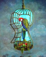 the parrot by rodulfo
