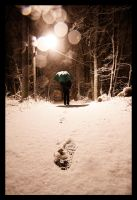 Finally Some Snow II by CalleHoglund