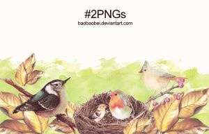 #2PNGs by Baobaobei