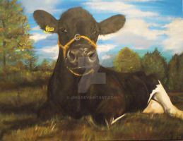 cow portrait by Jniq