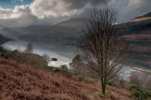 Loch Long from above by CharmingPhotography
