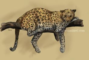 Leopard color by Aisling88