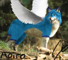 Real life Aoiro by Wolfdog27