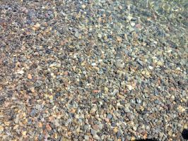 Fish amongst the Pebbles by nutshell