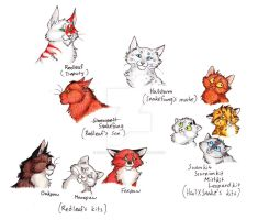 SB - ThunderClan - 4 by CaptainMorwen