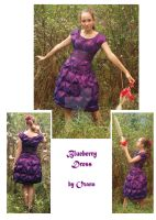 Blueberry Dress by MyrtilleGingembre