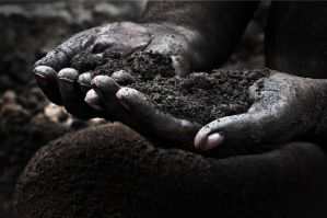 We All will Disolve in soil by onlyhumayun