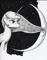 Lunar Night by VintageNinjaFish