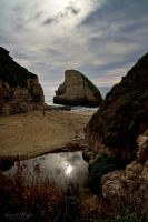 Shark Fin Cove by LeashaHooker